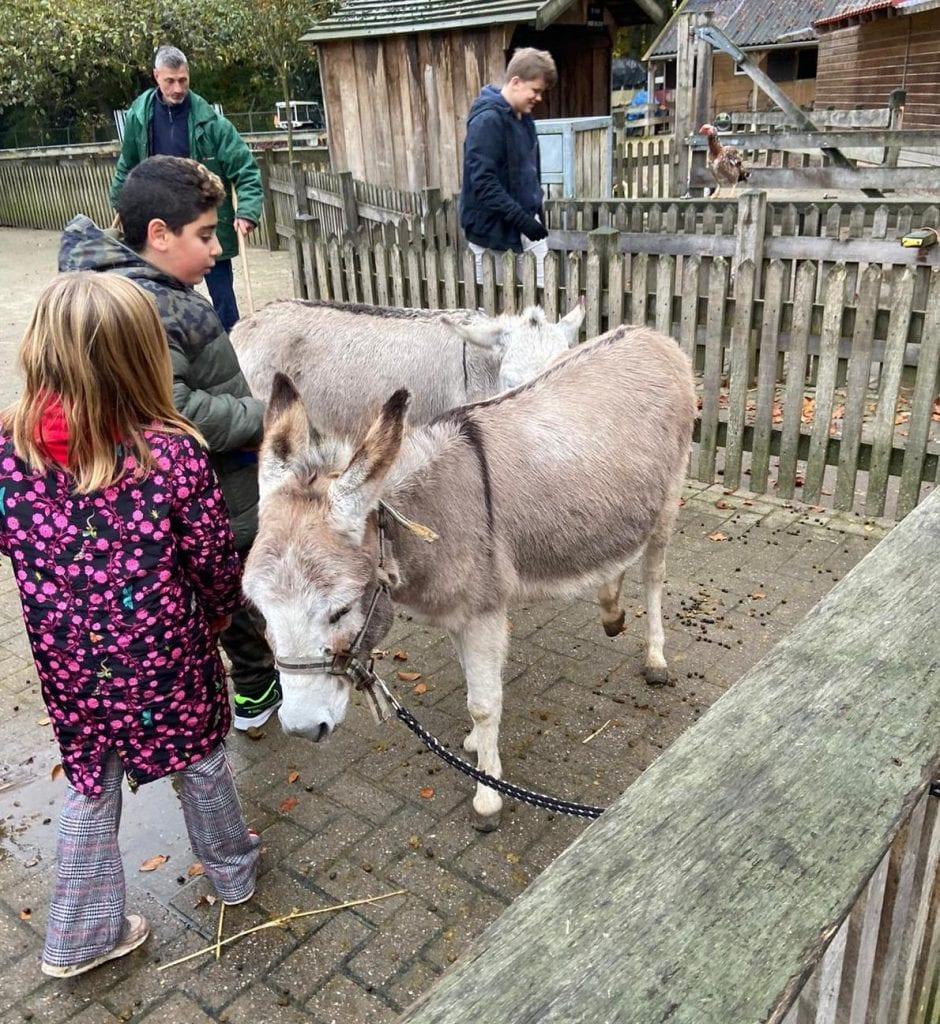 Kinderboerderij De Wesseler